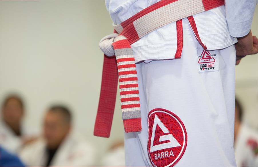 Gracie Barra Programs